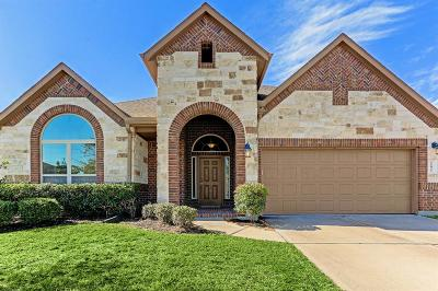 Richmond Single Family Home For Sale: 11031 Ellison Ridge Drive