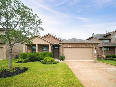 Katy Single Family Home For Sale: 23730 San Barria Drive