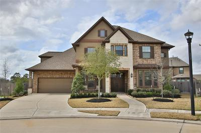 Tomball Single Family Home For Sale: 17307 Creekside Terrace Court