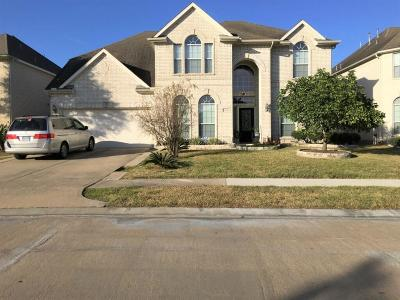 Sugar Land Single Family Home For Sale: 13136 Haven Falls Lane