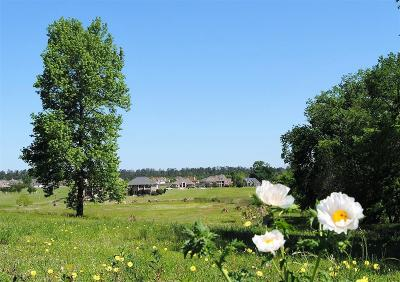 Montgomery Residential Lots & Land For Sale: 161 Grandview Boulevard
