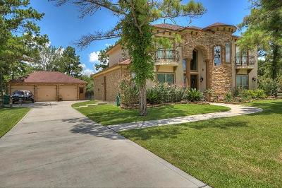Willis Single Family Home For Sale: 10881 Dauphine Street