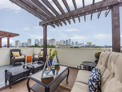 Houston Single Family Home For Sale: 1807 McIlhenny Street