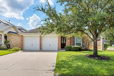 Tomball Single Family Home For Sale: 13139 Brantfield Park