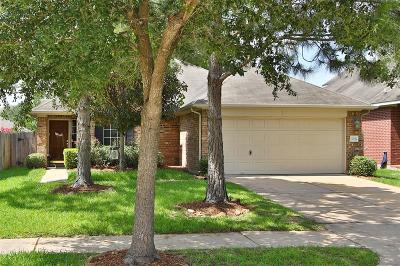 Katy Single Family Home For Sale: 20018 Silver Rock Drive