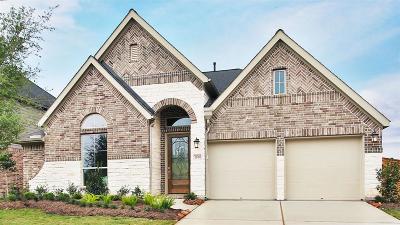 Fulshear Single Family Home For Sale: 28431 Asher Falls Lane