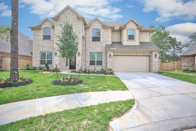 New Caney Single Family Home For Sale: 18907 Carson Glen
