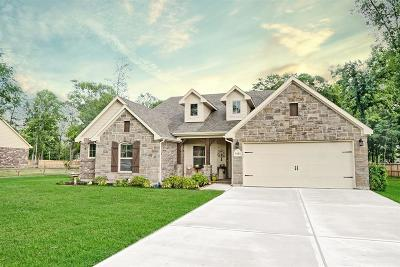 Conroe Single Family Home For Sale: 9151 Fallow Deer Drive