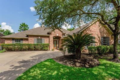 Friendswood Single Family Home For Sale: 3137 Indian Summer Trail