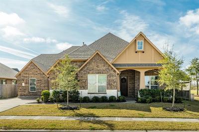 League City Single Family Home For Sale: 6207 Fairwood Creek Lane
