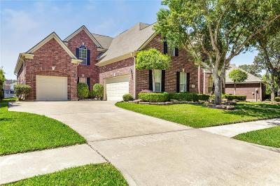 Sugar Land Single Family Home For Sale: 302 Sanderling Lane