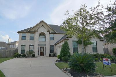 Sugar Land Single Family Home For Sale: 422 Callavance