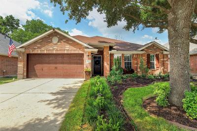 Tomball Single Family Home For Sale: 19327 Scarlet Cove Drive