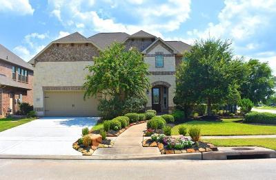 Rosenberg Single Family Home For Sale: 422 Honeysuckle Vine Drive