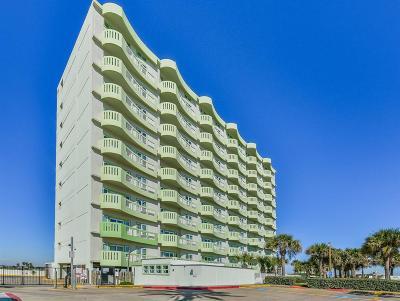 Galveston Rental For Rent: 9420 Seawall Boulevard #705