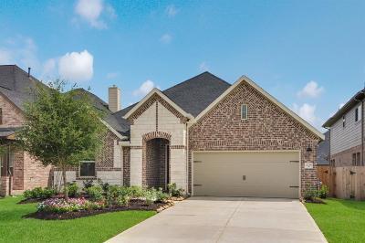 Katy Single Family Home For Sale: 2235 Falcon Brook