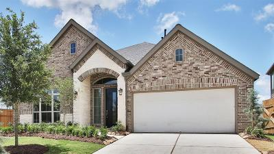 Fulshear Single Family Home For Sale: 3450 Willow Crescent Court