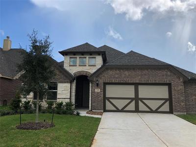 Texas City Single Family Home For Sale: 2908 Bernadino Drive