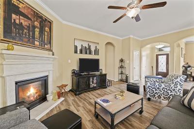 Rosharon Single Family Home For Sale: 13905 Bright Canyon Lane