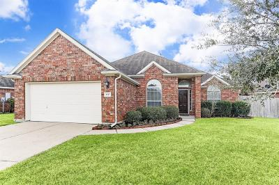 Katy Single Family Home For Sale: 6317 S Fawnlake Drive