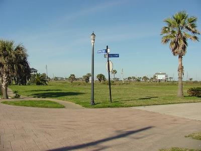 Galveston Residential Lots & Land For Sale: 25730 Spotted Sandpiper Drive