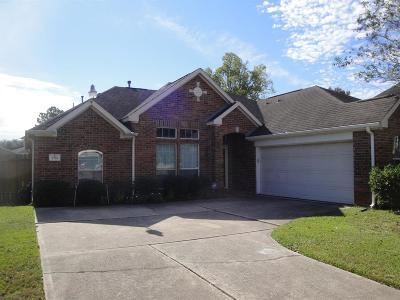 Houston Single Family Home For Sale: 2718 Travick Lane
