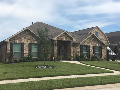 League City Single Family Home For Sale: 2413 Apache Street