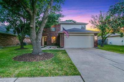 Katy Single Family Home For Sale: 2511 Desert Sage Drive