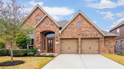 Pearland Single Family Home For Sale: 1820 Emerald Trace Lane