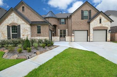 Houston Single Family Home For Sale: 5827 Vineyard Creek Lane