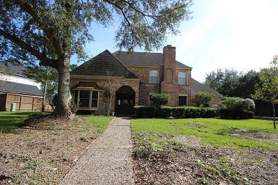 Houston Single Family Home For Sale: 819 Silvergate Drive