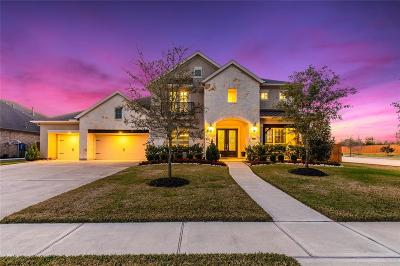 Katy Single Family Home For Sale: 2202 Park Ravine Drive