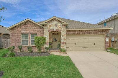 Conroe Single Family Home For Sale: 146 Meadow Valley Drive