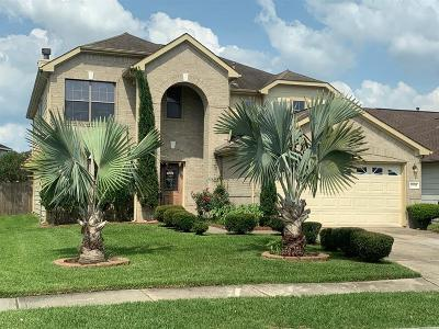 Tomball Single Family Home For Sale: 19711 Bold River Road