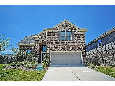 Katy Single Family Home For Sale: 2411 Village Water Court