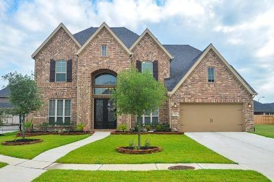 Katy Single Family Home For Sale: 29206 Rock Daisy Court