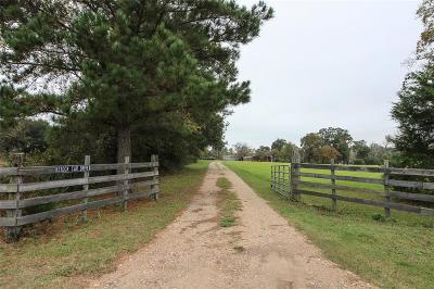 Waller County Farm & Ranch For Sale: 42415 Waters Road
