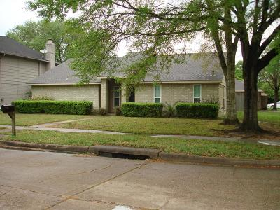 Houston Single Family Home For Sale: 15667 Fern Basin Drive