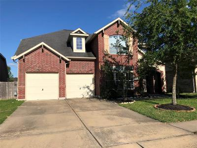 Katy Single Family Home For Sale: 9714 Parsonsfield Lane