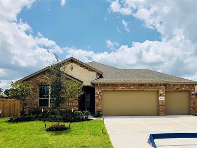 Tomball Single Family Home For Sale: 12523 Fort Isabella Drive