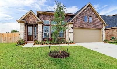 Tomball Single Family Home For Sale: 142 Covington Court