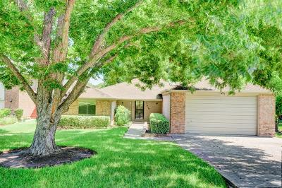 Montgomery Single Family Home For Sale: 1018 Lake View Drive