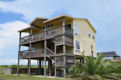 Crystal Beach Single Family Home For Sale: 835 S Tinkle Lane