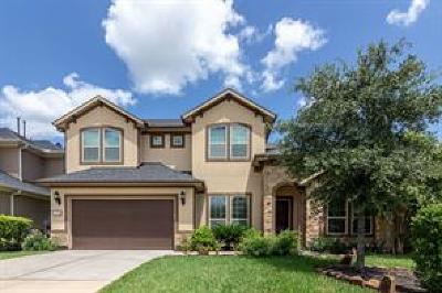 Shenandoah Single Family Home For Sale: 130 Bella Sole