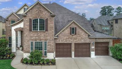 Single Family Home For Sale: 17117 Sandy Bottom Pond Lane