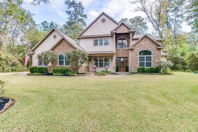 Tomball Single Family Home For Sale: 22818 Timberlake Creek Road