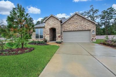 Single Family Home For Sale: 383 Connemara Drive