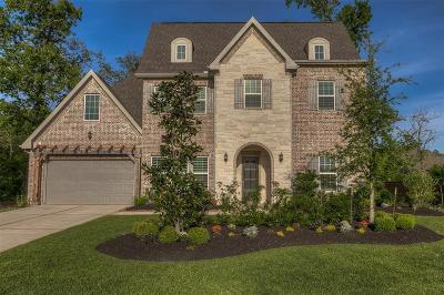 Montgomery Single Family Home For Sale: 134 Canvas Back Drive
