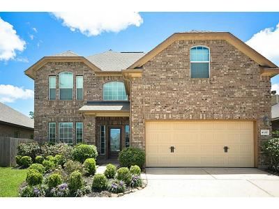 Friendswood Single Family Home For Sale: 4120 Livorno Lane