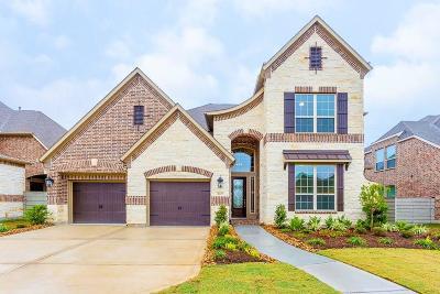 Manvel Single Family Home For Sale: 2827 Maple Oak Lane